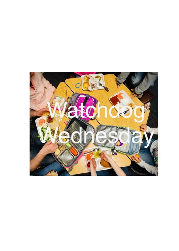 watchdog wednesday flyer