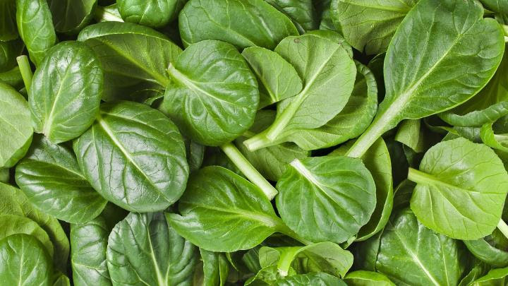 pic of spinach